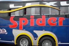 Spider-Blue-2014.jpg