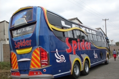 Spider-Blue-Back.jpg