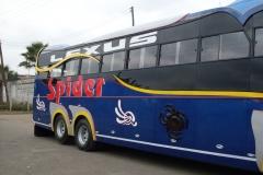 Spider-Blue-Sides.jpg