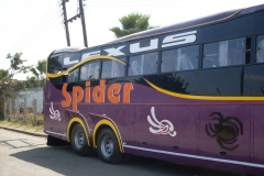 Spider-Purple-Side-View.jpg