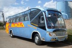 simba-2.jpg