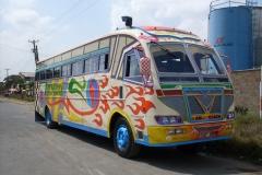 am-coach1.jpg
