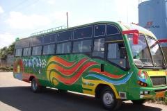 tawfiq-1.jpg