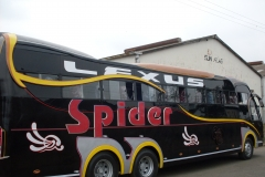 Spider-Black.jpg